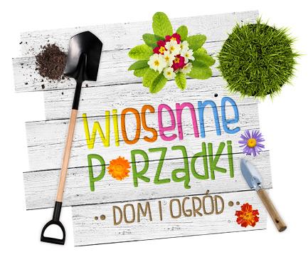 Oferty sezonowe w Gorzowie Wielkopolskim